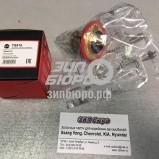 Термостат Accent (Тагаз)/Sonata V 06- DOHC/Getz/Elantra XD/Tucson/Cerato I (FENOX)-TS016